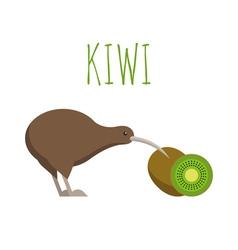Kiwi bird and kiwi fruit vector