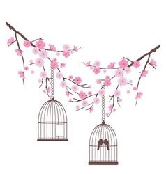 bird love cage vector image