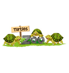 Turtles in the zoo vector