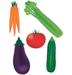 Fresh vegetable assortment vector
