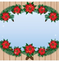 Christmas poinsettia flowers background with pine vector
