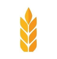 Leaves icon wheat ears design graphic vector