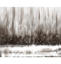 Blurry abstract bokeh lights on nature background vector