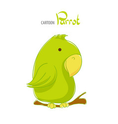 cute green parrot vector image vector image
