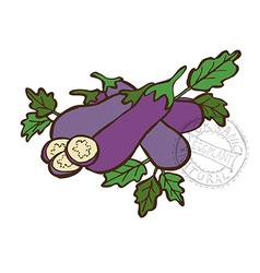 hand drawn vegetable vector image vector image