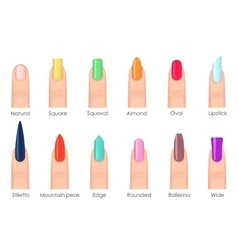 Nails shape icons set Types of fashion bright vector image