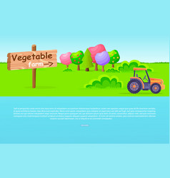 vegetable farm pointer with trees and tractor vector image vector image