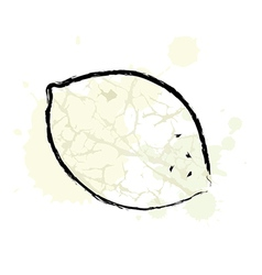 Zen Lemon vector image