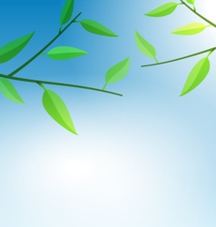 Branch tree with green leaves vector