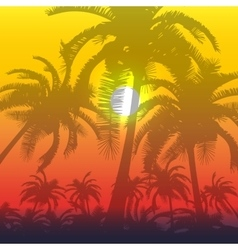 Palm silhouette background vector