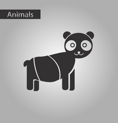 black and white style icon panda bear vector image