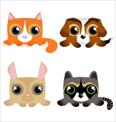 Cute funny pets vector image vector image