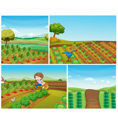 four farm scenes with vegetables and scarecrow vector image