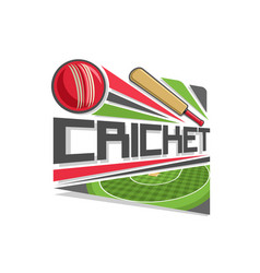 Logo for cricket game vector