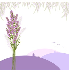 Purple lavender flower greeting card vector