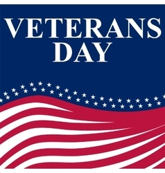 Veterans Day in the US vector image vector image
