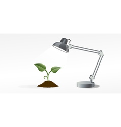 Lamp and sprout vector