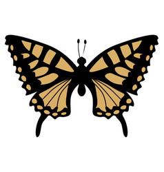 Swallowtail vector