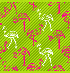 green and pink striped flamingo bird pattern vector image