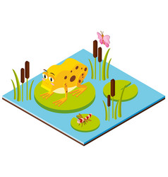 3d design for frog and dragonfly on leaves vector image vector image