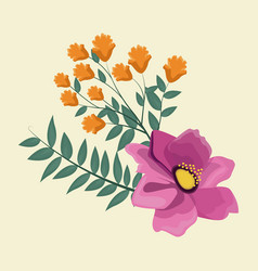 Anemone flowers leaves decoration image vector