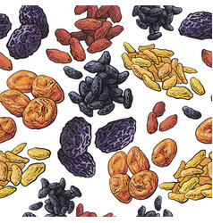 Sketch style dried fruits seamless pattern on vector