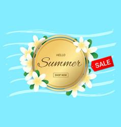 Summer plumeria flowers gold frame or summer vector
