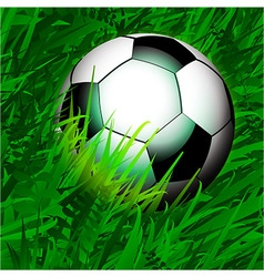 Football over close up grass vector