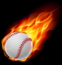 Baseball on fire vector image