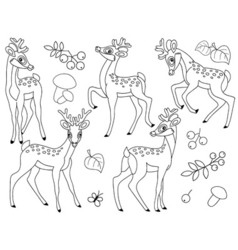 Black And White Deers vector image vector image