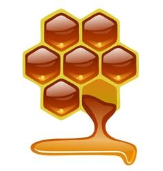 Honeycomb with honey vector