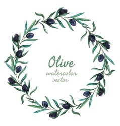Olives vector