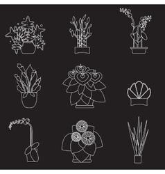 Big houseplants Set of flat potted interior vector image