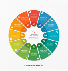 circle chart infographic template with 12 options vector image vector image