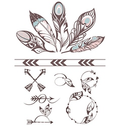 Collection of feathers vector image