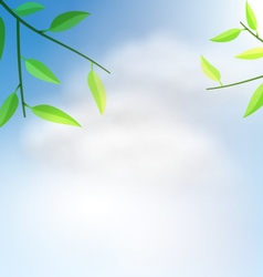 Natural background with branch tree vector