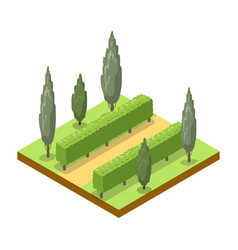 Park alley with trees isometric 3d icon vector