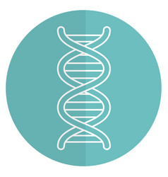 Dna molecule isolated icon vector