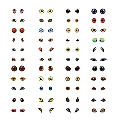 animals eyes set vector image