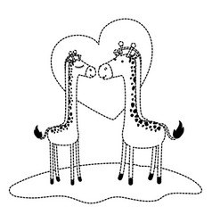 Giraffes couple over grass in black dotted contour vector