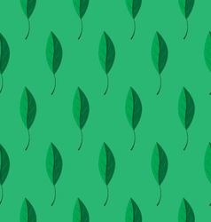 leaves pattern on green background vector image