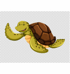Sea turtle on transparent background vector