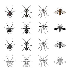 spider insect ant mosquito bee insect set vector image vector image