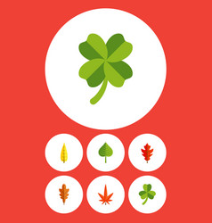 Flat icon leaves set of maple aspen frond and vector