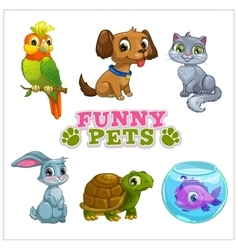 Funny cartoon pets collection vector
