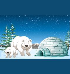 Polar bears standing near igloo at night vector
