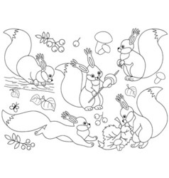 Black and white squirrels vector