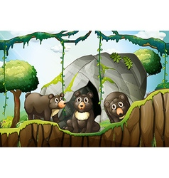 Three little bears by the cave vector image vector image