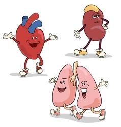 Human internal organs characters 1 vector