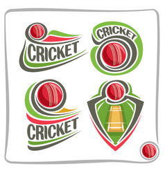 set icons for cricket game vector image vector image